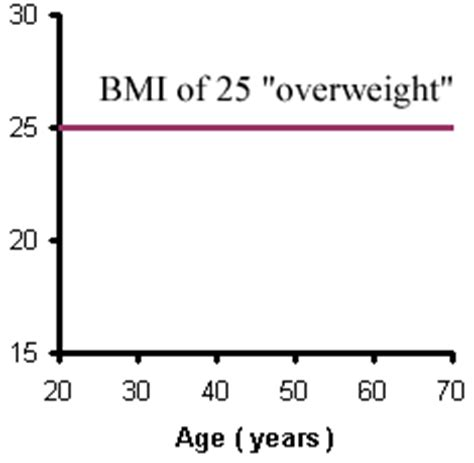 Essay on obesity in america Definition Essay