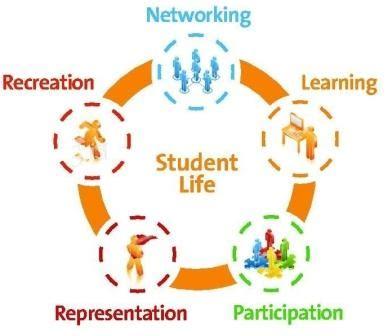 Essay on college life pdf